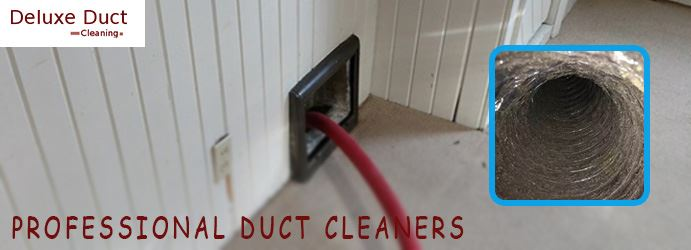Professional Duct Cleaners