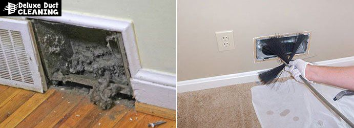 Duct Mould Removal Pines Forest
